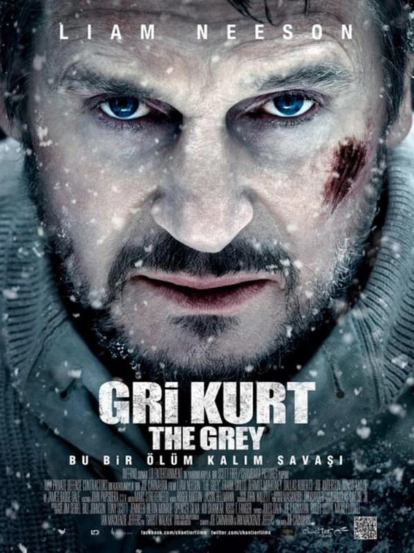 Gri Kurt Full HD Film izle